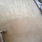Carpet-Cleaning-Lacey