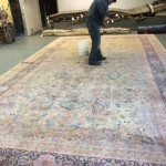 Commercial Carpet Cleaning Lacey