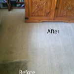 Dirt Stains Removal Lacey