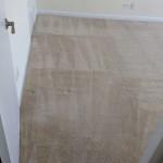 Lacey-Wall2WallCarpets