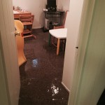 Lacey-office-room-flood-damage-repair