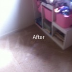 LaceyWall2WallCarpetSteamCleaningB