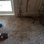 Oil-Stain-Removal-After-Lacey