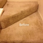 Stairs-Carpet-Cleaning-Lacey-A